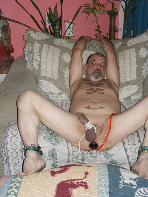 tumblr slave humiliation