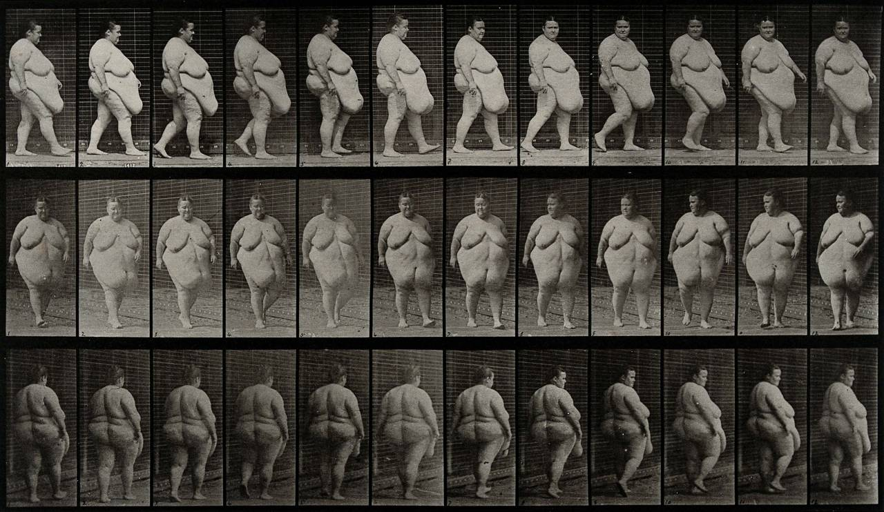 Image result for eadweard muybridge walking