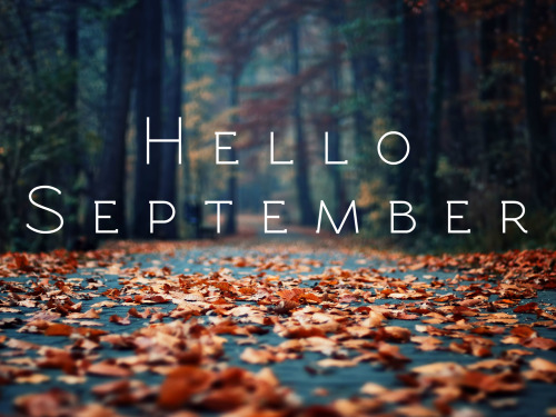 Black And White Gothic Wallpaper Hello September On Tumblr