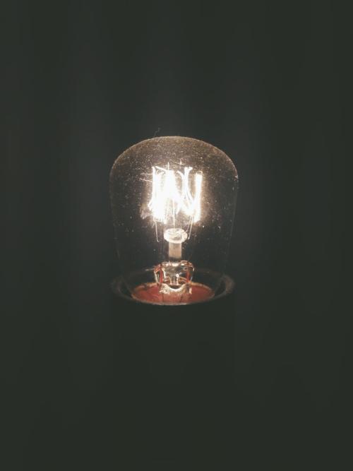 bulb  Tumblr