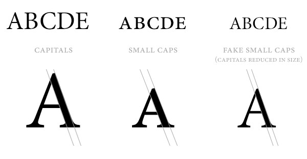 A Year of Type Design