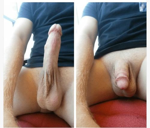 average dick tumblr