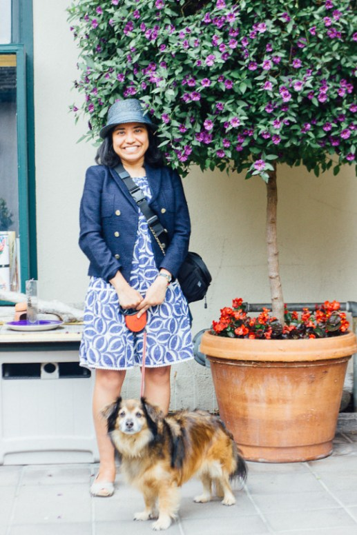 Best of Dog Friendly Carmel, California: A Guide to dog