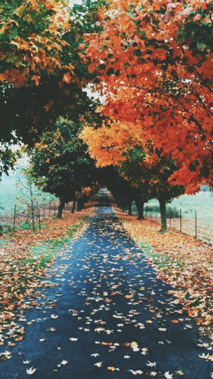 Best Car Lock Screen Wallpaper Autumn Lockscreen Tumblr