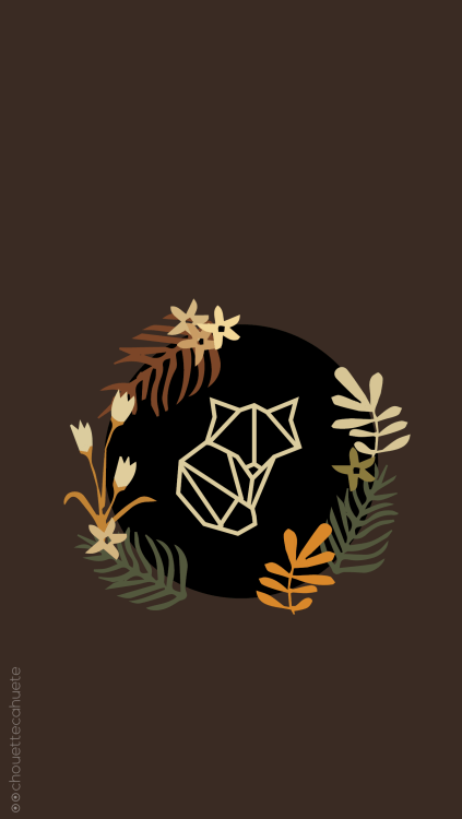 Hello Fall Iphone Wallpaper Owl Wallpaper Tumblr