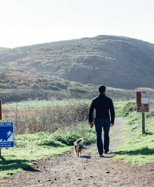 Kehoe beach is one of the few dog friendly beaches at Pt. Reyes National Seashore