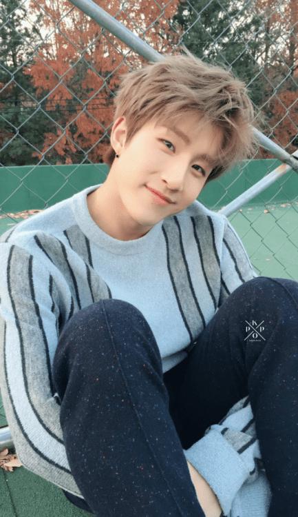 Cute Hug Wallpaper Jinjin Astro Tumblr