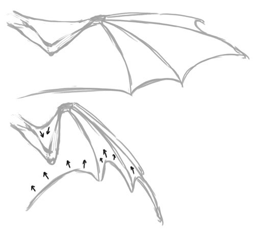 Do you have any tips or tricks for drawing dragon wings in