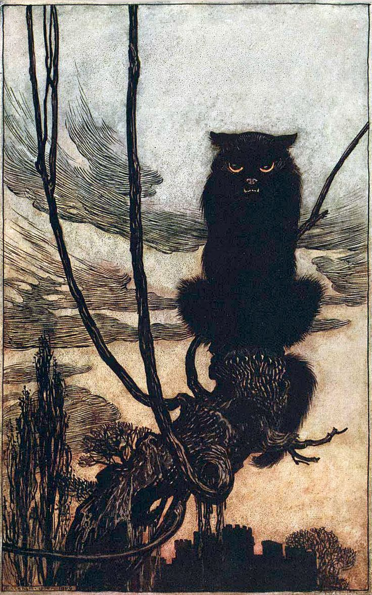 Arthur Rackham illustration, Jorinda and Joringel from Grimm's Fairy Tales, 1909
