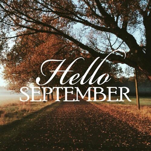 Fall White Pumpkins Wallpaper Hello September On Tumblr