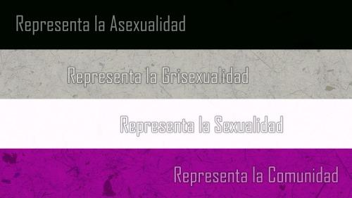 Resultado de imagen para bandera de la asexualidad