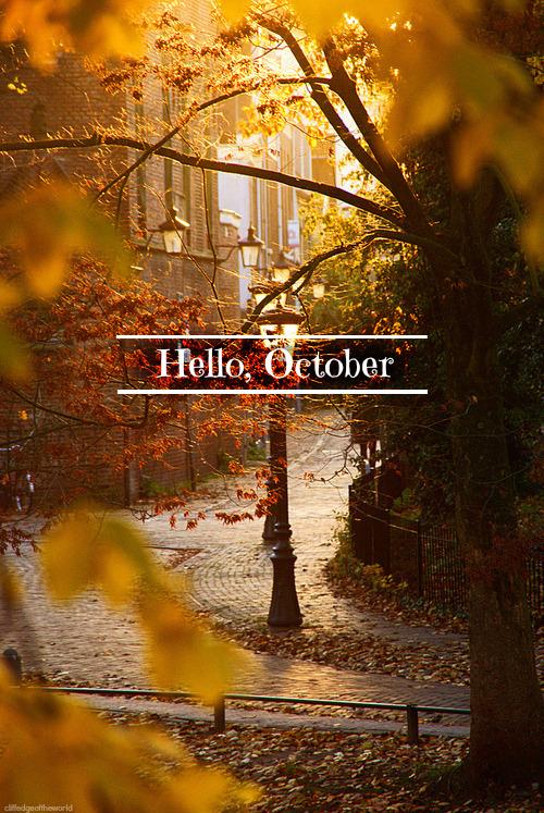 Wallpaper Hello Fall Hello October On Tumblr
