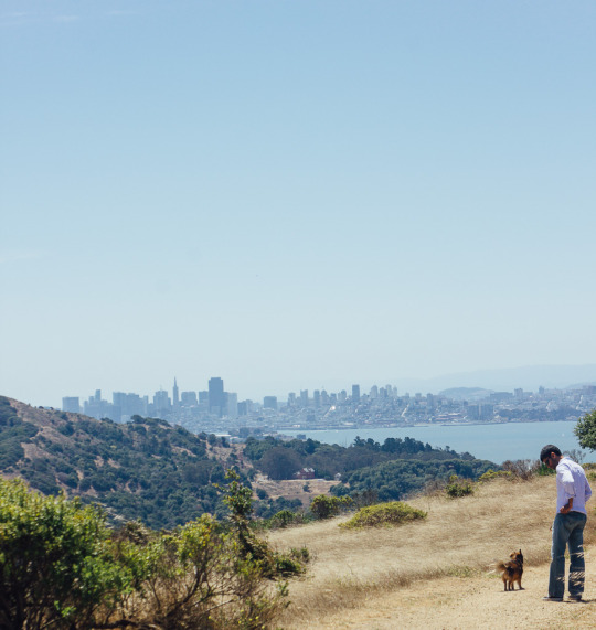 dog friendly hiking Tiburon St. Hilary Open space Preserve
