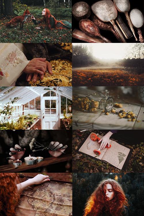 Fall Aesthetic Wallpaper The Irish Witch Tumblr
