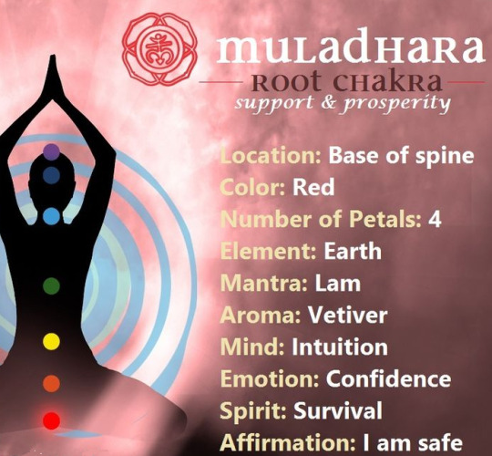 What is Chakra Shuddhi and how can we cleanse our Chakras ?