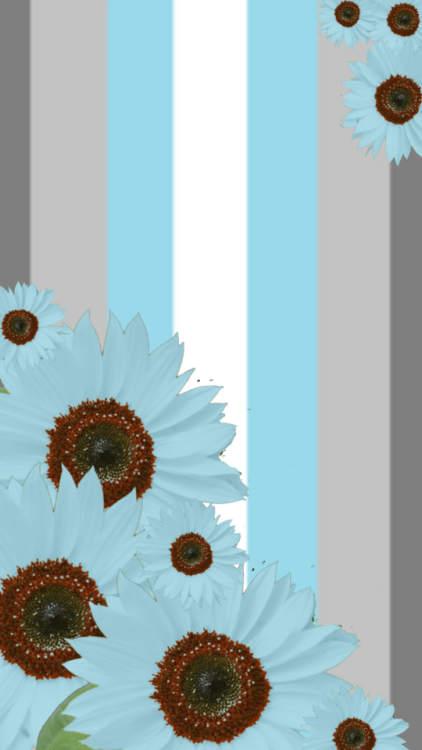 Sunflower Wallpaper With Quote Sunflower Background Tumblr