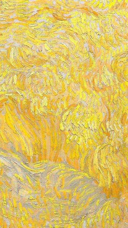 Wallpaper Hippie Girl Sunflower Wallpaper Tumblr