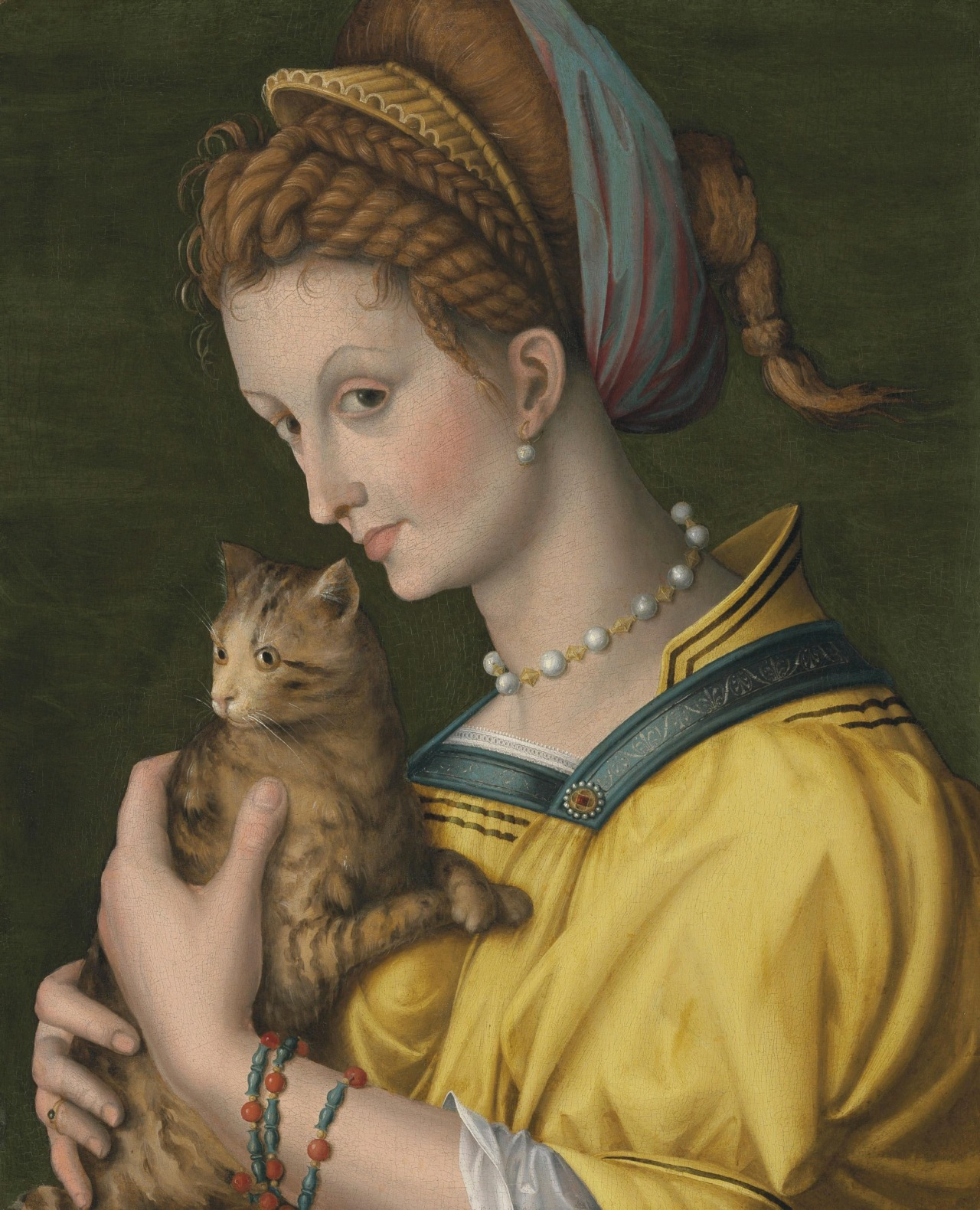 Francesco Bacchiacca, Portrait of a young lady holding a cat, ca. 1525--1530