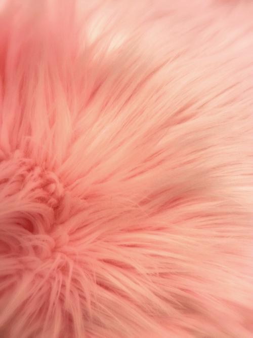 pillows  Tumblr