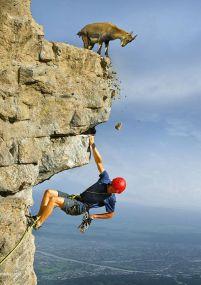 Isaiah 39: Pride before the fall  King Hezekiah fell hard