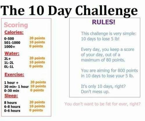 10 Day Challenge On Tumblr