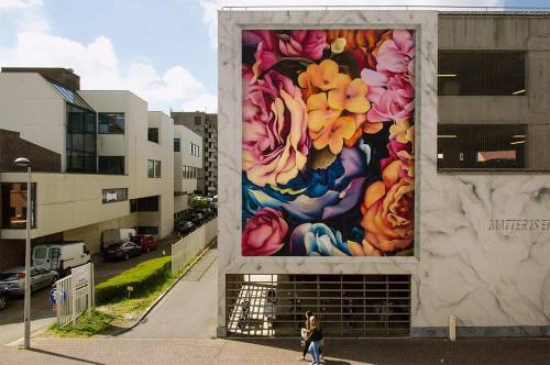 thcrstlshp:  Beautiful flowers by @cyrcle to get you through this cold weather 🌸 #streetart #cyrcle #flowers #mural #art #visitoostende #belgium https://www.instagram.com/p/BM_-_WFAADt/