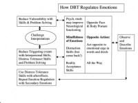 Emotion Regulation Worksheet. Worksheets. Tutsstar
