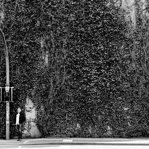 #photooftheday #onephotoaday #photography #photographerslife #streetart #streetlife #streetstyle #streetphotography #reportage #reportagefotografie #reportagephotography #blackandwhite #blackandwhitephotography #bwphotography #monochrome #people #peoplephotography #socialphotography #social # (hier: Bielefeld, Germany)