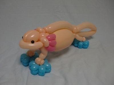ウーパールーパー axolotl 2015.2.9