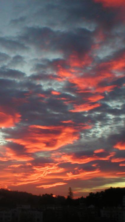 Harry Styles Wallpaper Iphone Sunset Lockscreen Tumblr