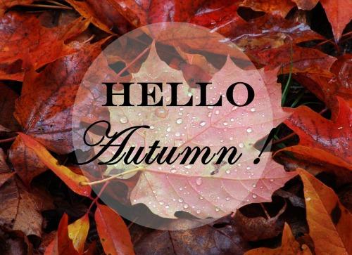 Fall Trees Wallpaper For Desktop Hello Autumn On Tumblr