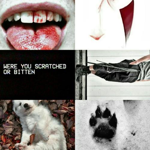 meme modern aesthetics  Tumblr