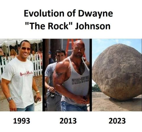 Evolution Evolution of Dwayne The Rock Johnson. Funny Pictures Funny Quotes Funny Memes