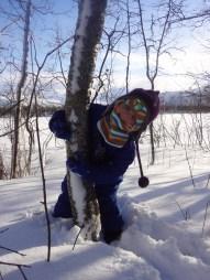 Little tree hugger