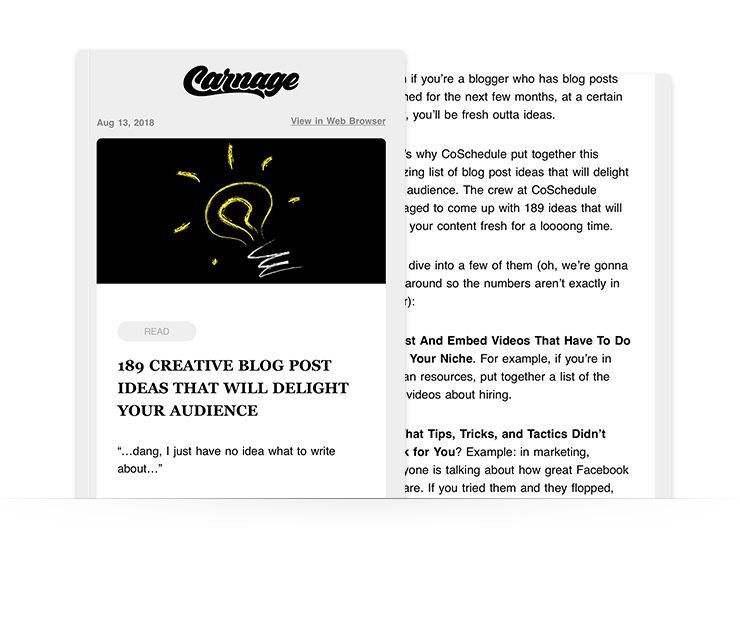 email newsletter example from company Carnage