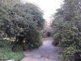 Jardim 3
