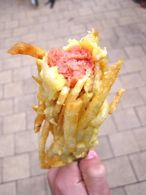 french fry wrapped hot dog