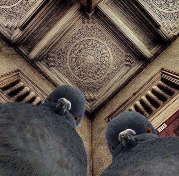 11 Amazing Pictures With A Different Perspective