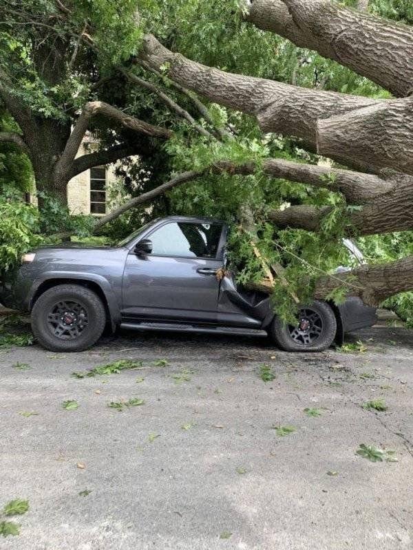 12 Hilarious Car Disaster Photos
