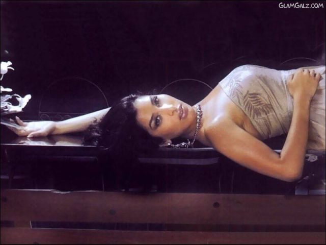 Click to Enlarge - Spicy Sophia Chaudhary Wallpapers