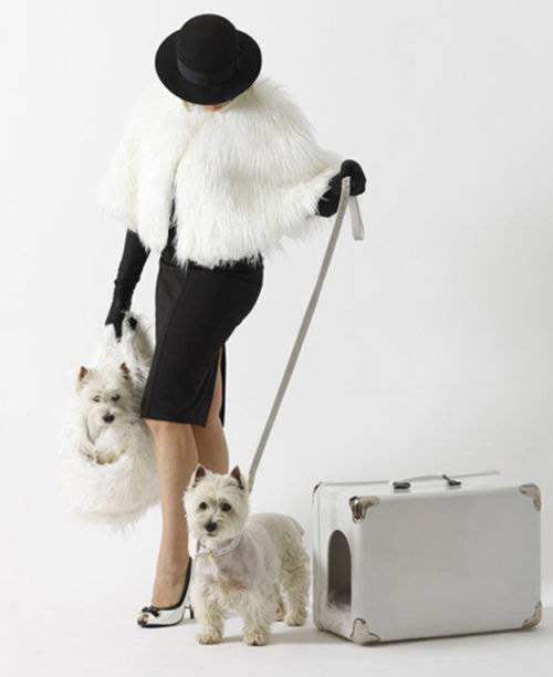 Portable Dog House by Marco Morosini