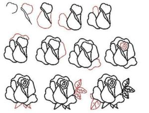 draw rose ways drawing simple learn easy realistic tutorial stepwise drawings funotic step advertisement dr drodd