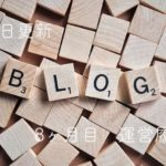 ブログ運営の報告をします【毎日更新8ヶ月目・5,000PV】