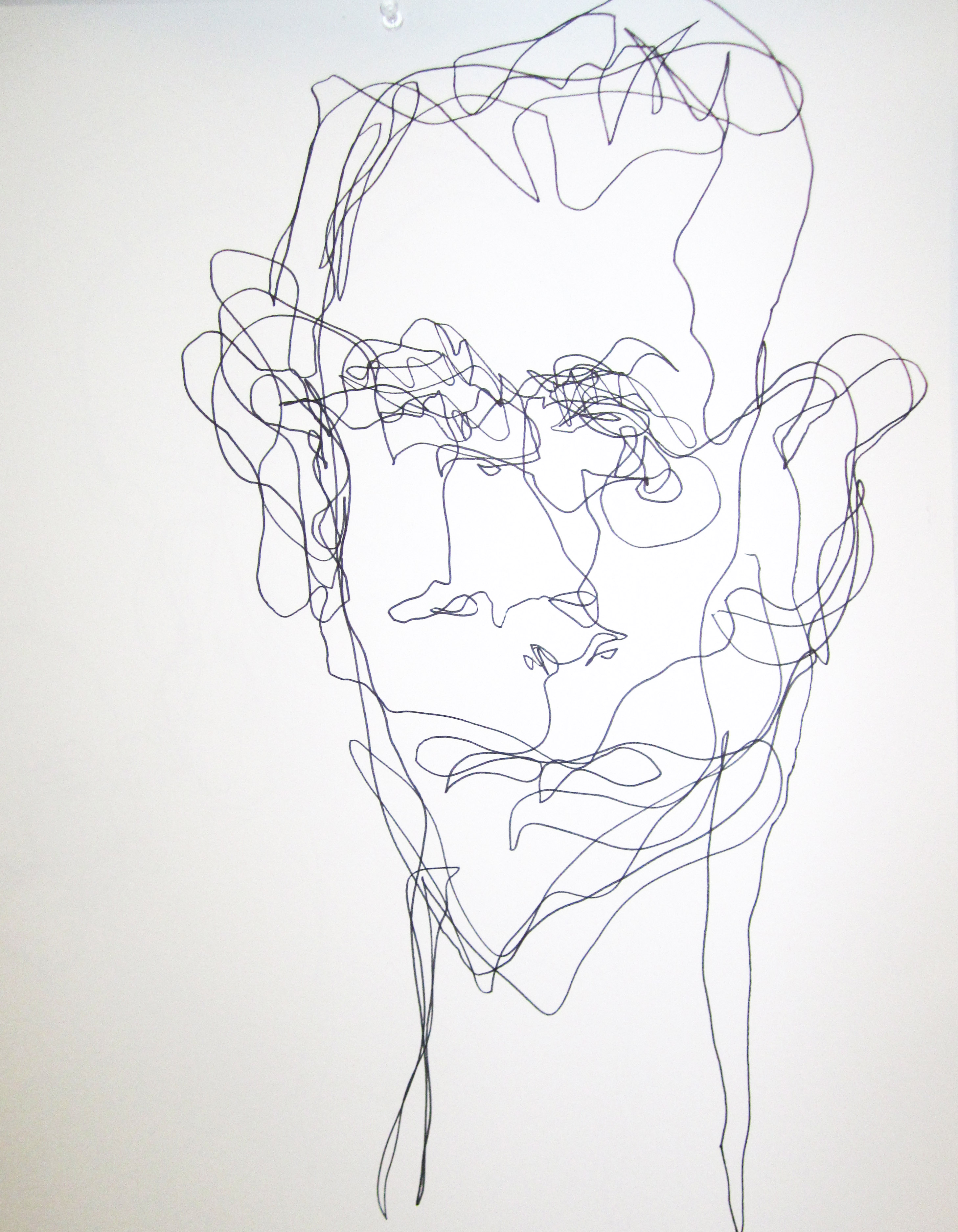 Single Line Contour Drawing