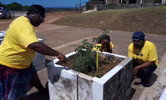 Volunteers from Montego Bay Pride paint a planter at Cornwall Regional Hospital. (Photo courtesy of Maurice Tomlinson)