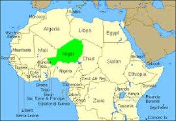 Location on Niger in north-central Africa. (Map courtesy of Google.com)