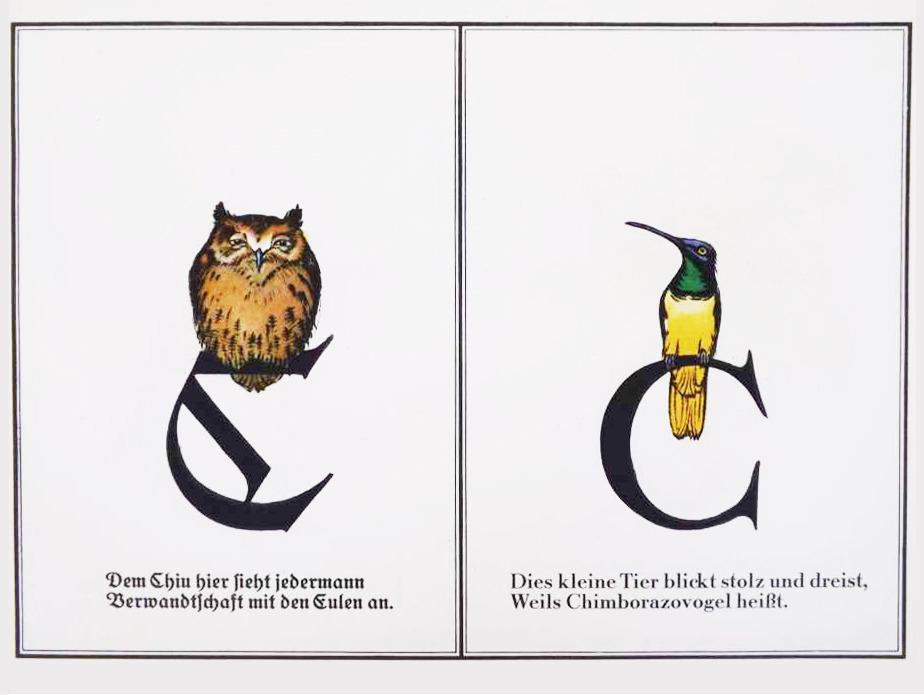 Design is fine. — Friedrich Wilhelm Kleukens, Birdl ABC