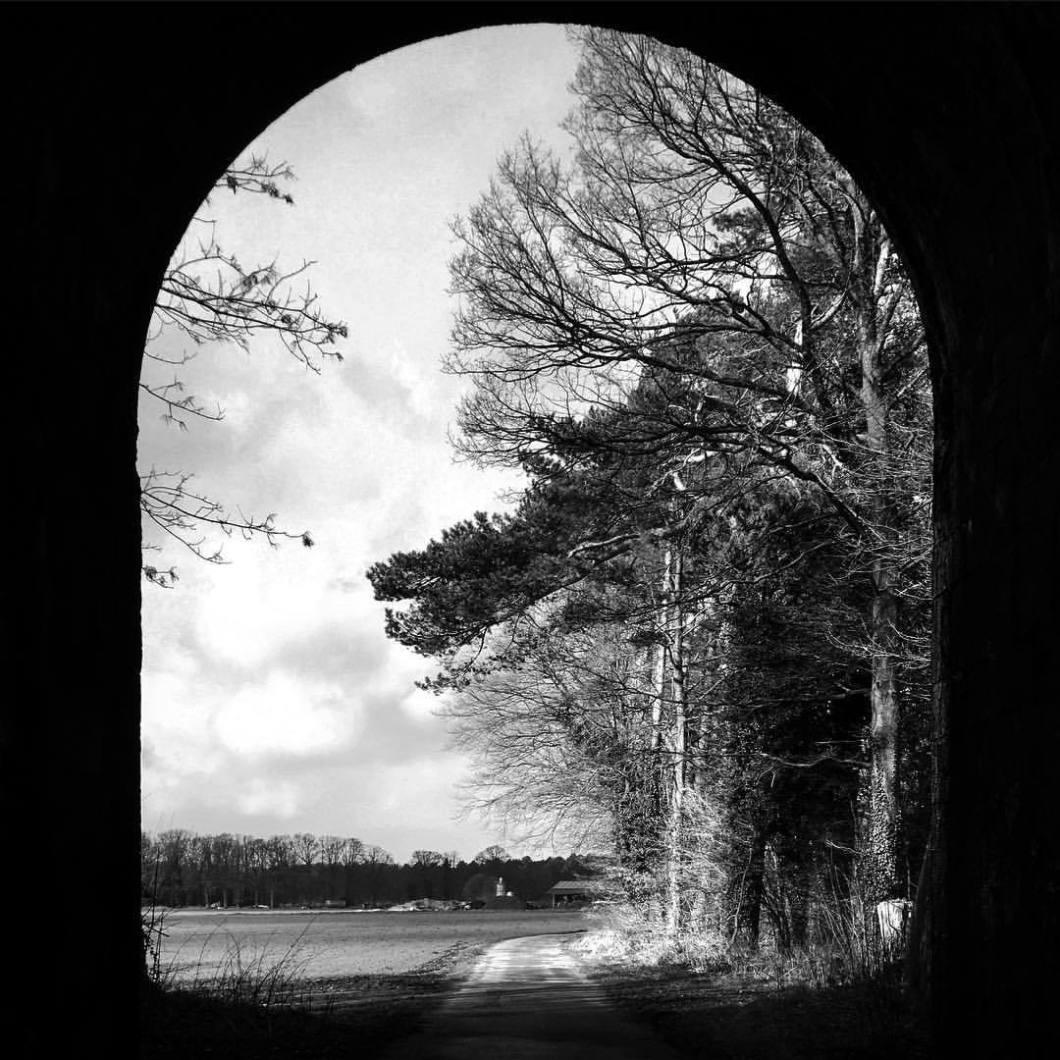 Tunnel, Bielefeld 2017..#photooftheday #onephotoaday #photography #iphoneonly #iphonography #iphonephotography #bwphotography #swfotografie #monochrome #monochromelovers #architecture #architecturephotography #architektur #architekturfotografie #streetphotography #sparrenburg #bielefeld #liebefeld #nature #naturephotography #trees #mystery #forest (hier: Bielefeld, Germany)