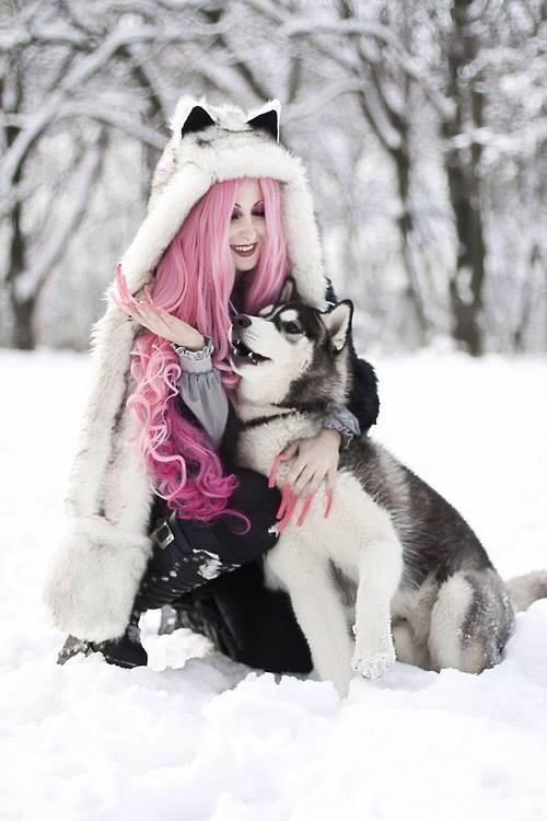 Zedge Cute Cats Wallpapers Long Haired Husky Tumblr