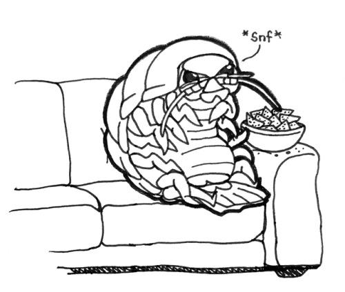 giant isopod on Tumblr